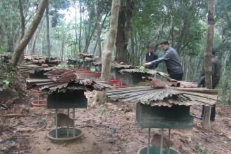 Tạo sinh kế góp phần bảo tồn Di sản Vườn quốc gia Phong Nha - Kẻ Bàng